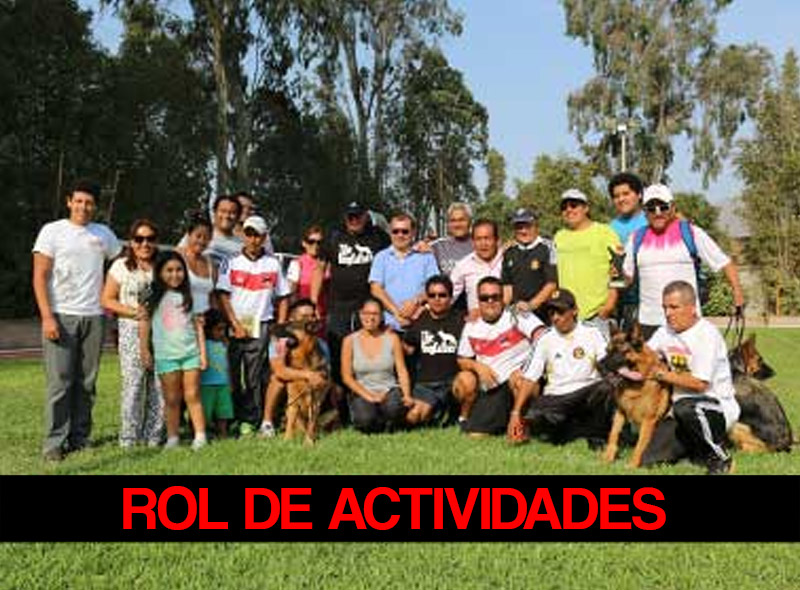 ROL-DE-ACTIVIDADES-RED