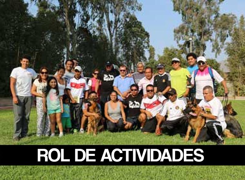 ROL-DE-ACTIVIDADES