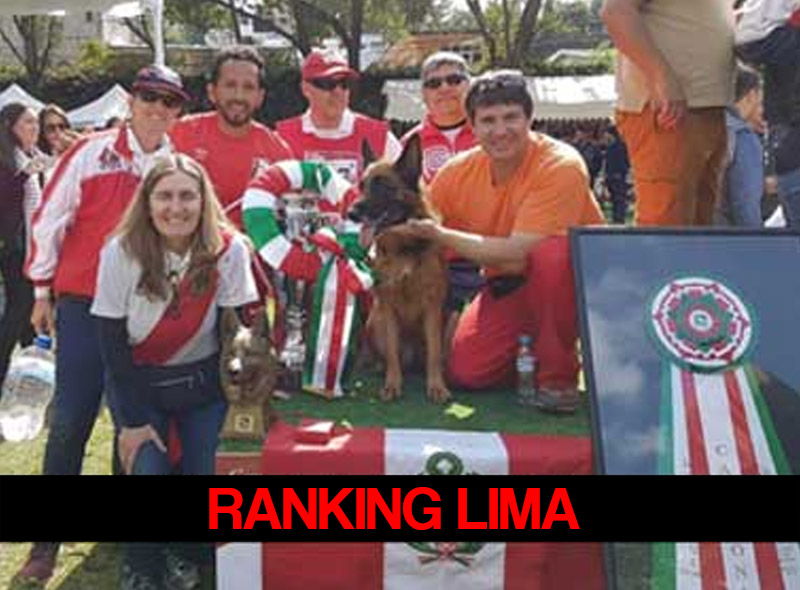 ranking-lima-RED